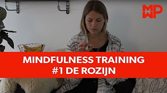 Mindfulness training #1 De rozijn